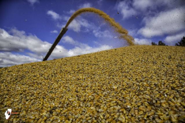 Farmers prepare for another big crop; demand key to prices