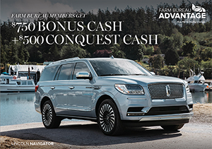 Lincoln bonus cash