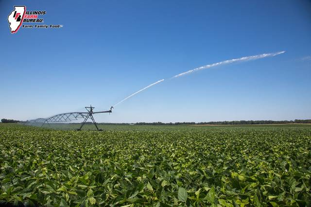 Stewardship project seeks nutrient tools for irrigators