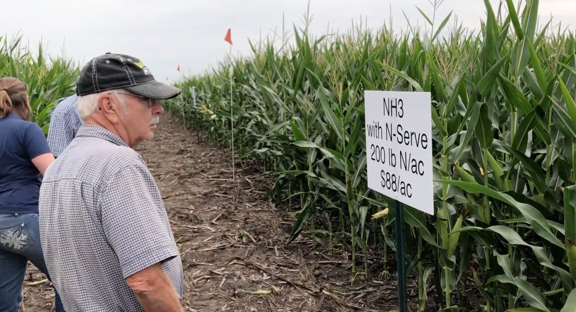 Nitrogen strip trial evaluated at field day