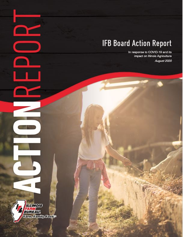 Feedback on the Board Action Report